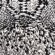 Snakeskin Print(A06582)
